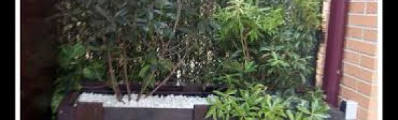 Cajón de madera para  jardinera